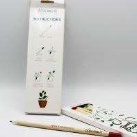 Matite piantabili con seme